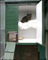Boarding Cattery unit accommodation